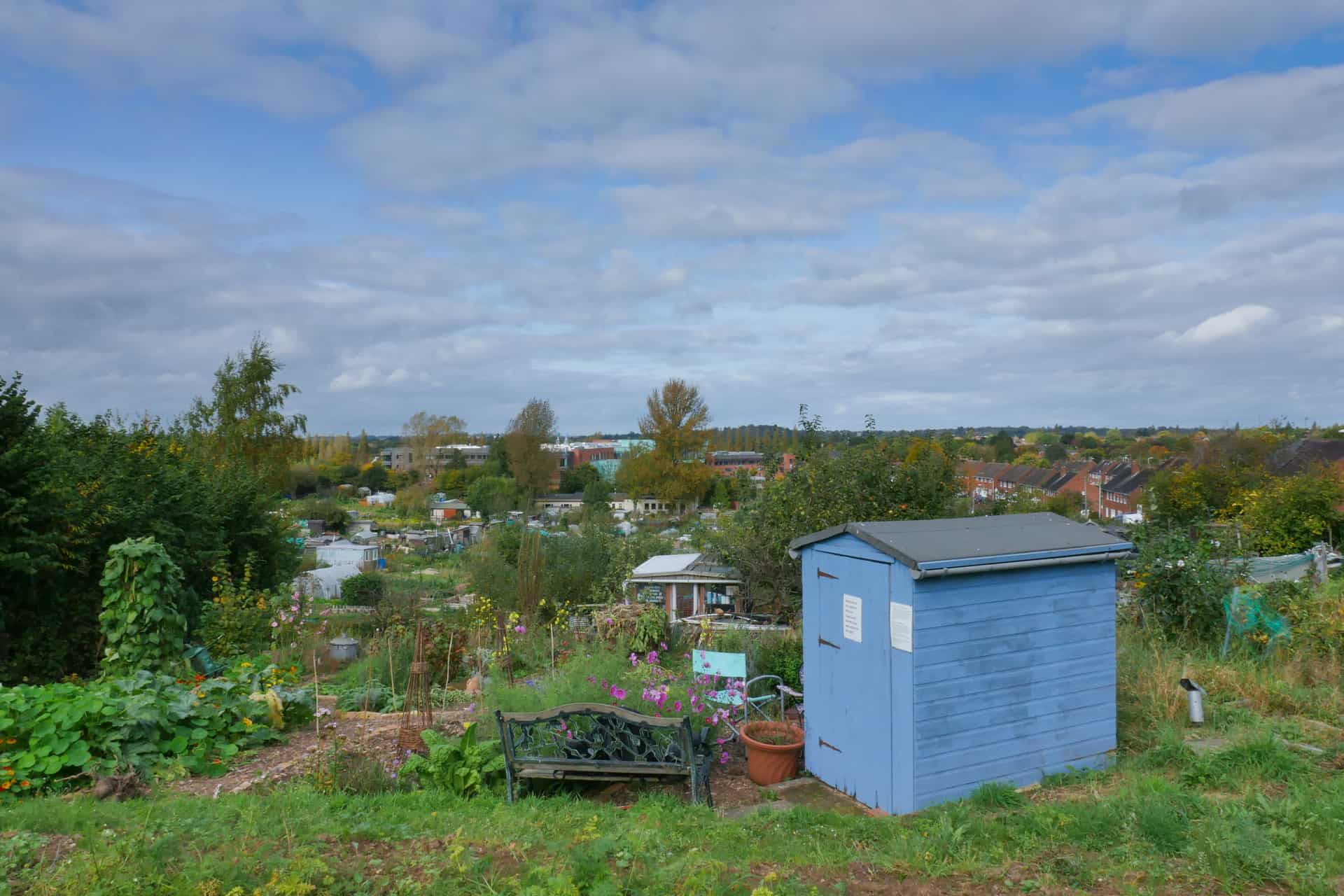 The Boundary Way Allotment and Community Garden, with the Camera Obscura in the foreground (blue shed).
