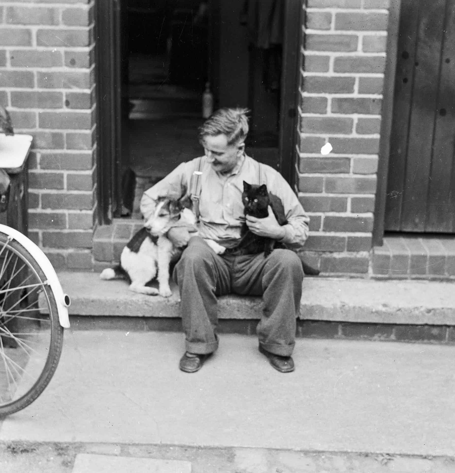 We lived in Wallace Road until I was 24. I never saw my dad as being an animal-friendly person so to see him with the cat, Tibby is unsual. This dog was one that my brother brought back from his time when he was in the national service, in the army.  It caused a bit of uproar that did. Having a dog in the house with a cat as well. But it did work out.