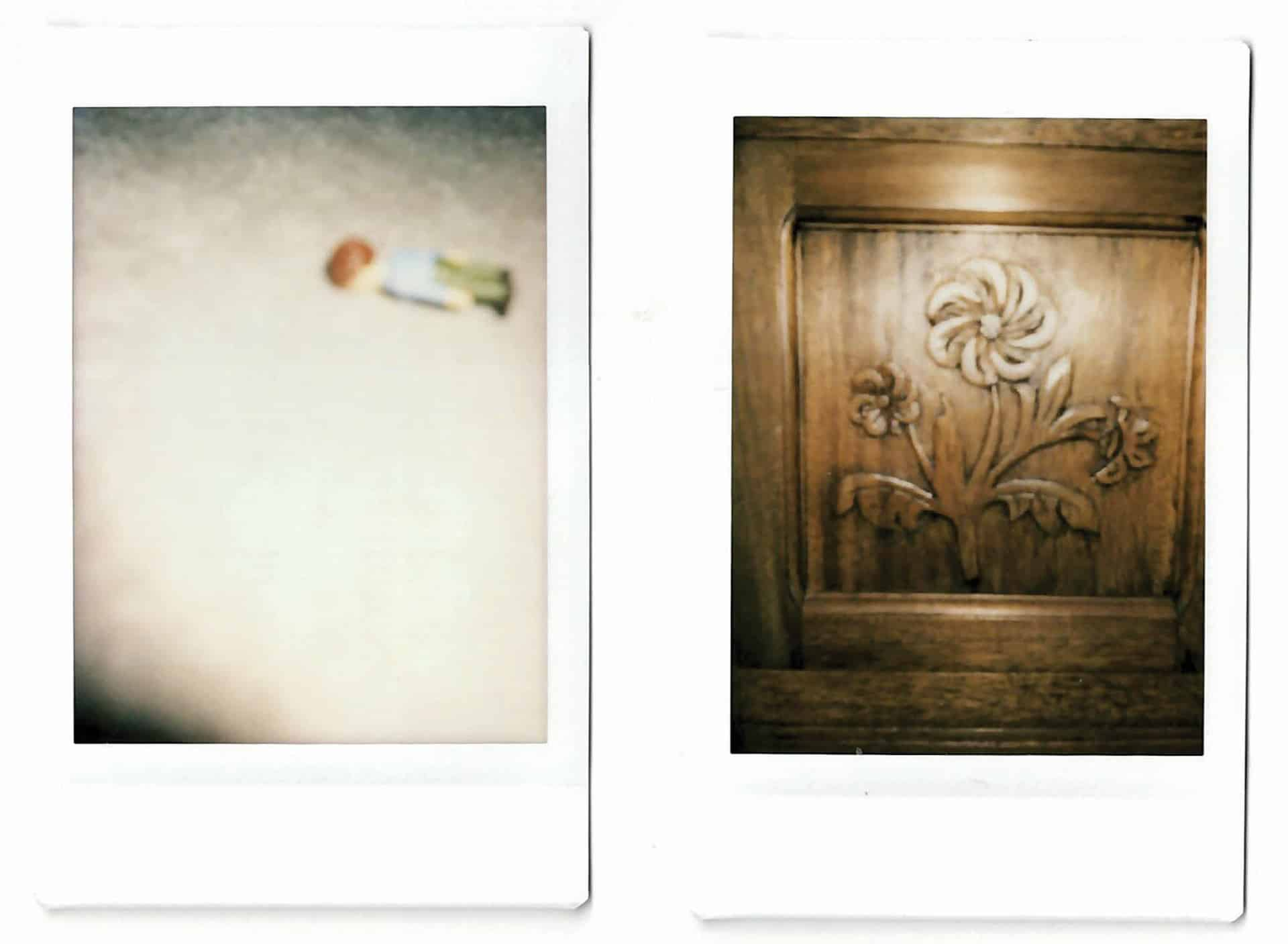 Charlie and Bill, instant photographic prints by Anneka French, 2020